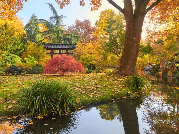 Bunter Herbst im Park